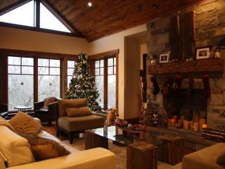 Stunning Home Along Hiking Trail, Walk to Ski Hill - Kitchener vacation rentals
