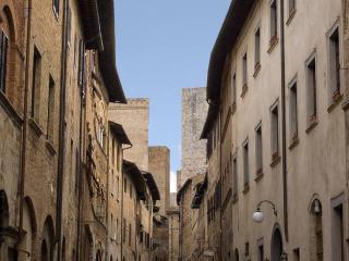 Historical Palace San Gimignano WiFi  free - San Gimignano vacation rentals