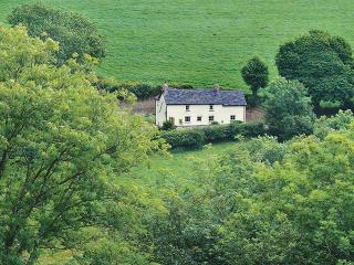 Lovely 3 bedroom House in Bwlchnewydd - Bwlchnewydd vacation rentals