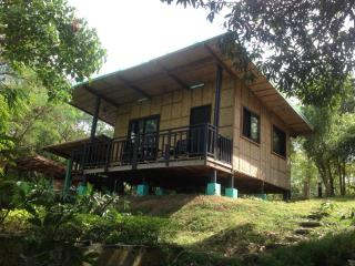 Native House with beautiful pool in Central Luzon - Bagac vacation rentals