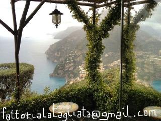Botticella Free  Breakfast Parking 1meal@ Tagliata - Positano vacation rentals