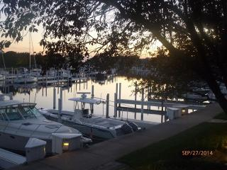 Waterfront Single-Level Condo with Garage - Manistee vacation rentals