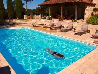 chateau de Mazelieres pool cottage - Espiens vacation rentals