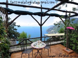 La Limonella @La Tagliata Breakfast Parking Free - Positano vacation rentals