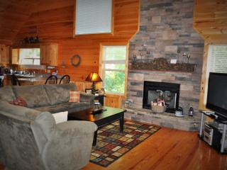 Perfect Cabin with A/C and Central Heating - Blue Ridge vacation rentals