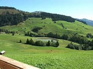 Maiensäss Chalet Canischauna ~ RA11592 - Andiast vacation rentals
