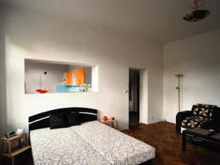 Cozy Condo with Internet Access and Satellite Or Cable TV - Pisek vacation rentals