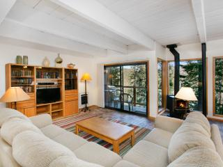 Timber Ridge 37 - Ski in Ski out Mammoth Condo - Mammoth Lakes vacation rentals