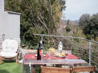 Maison historique classée 3 étoiles - Grosseto Prugna vacation rentals