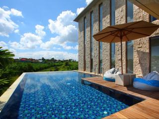 Rooftop Pool Villa in Canggu - Canggu vacation rentals