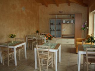 olive verte - Montenero di Bisaccia vacation rentals
