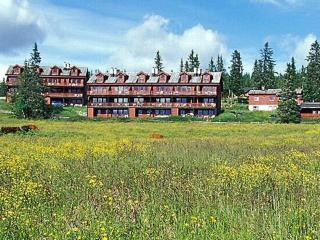 Lillehammer ~ RA41431 - Eastern Valleys vacation rentals