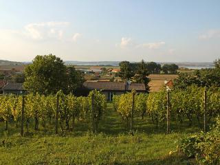 Milovice ~ RA12536 - Czech Republic vacation rentals