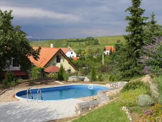 Horni Vestonice ~ RA12534 - Mikulov vacation rentals