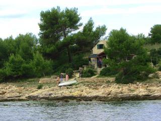 Pet-friendly island waterfront cottage Sunflower - Zizanj Island vacation rentals