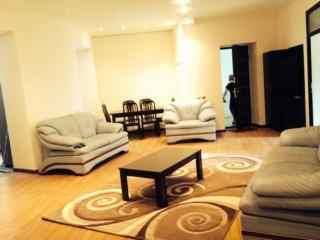 Apartment on Byuzand 101 str. - Armenia vacation rentals