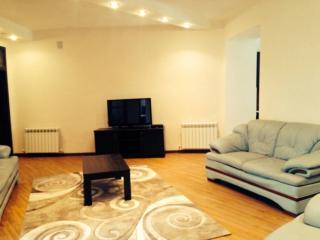 Apartment on Byuzand 101 str. - Yerevan vacation rentals