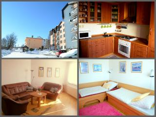 Sunny Condo with Books and Freezer - Vysoke Tatry vacation rentals