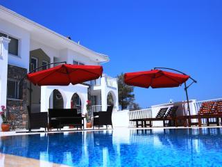 Villa  Kleo - Sarigerme vacation rentals