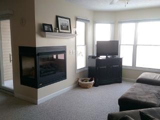 Comfortable Family Condo in Harbor Village - Ludington vacation rentals