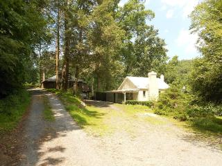 Cute/Cozy One Bedroom Cottage near National Forest - Harrisonburg vacation rentals