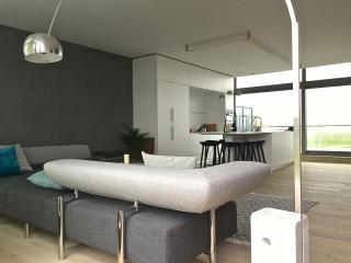 PETITE CABANE Ferienwohnung für bis zu 6 Personen - De Haan vacation rentals