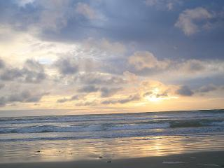 G202 - Luxury on the Beach - Oceanside vacation rentals