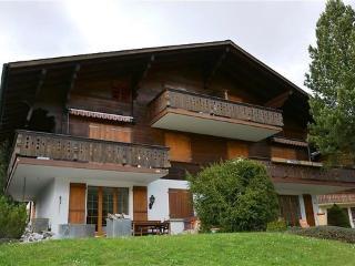 Chouflisbach I ~ RA9883 - Schönried vacation rentals