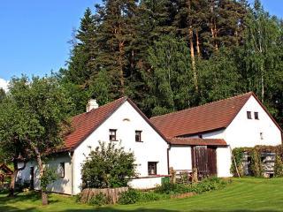 Benesov Nad Cernou ~ RA12434 - Cesky Krumlov vacation rentals