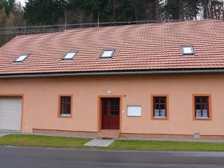 Petrovice ~ RA12517 - Jablonne nad Orlici vacation rentals