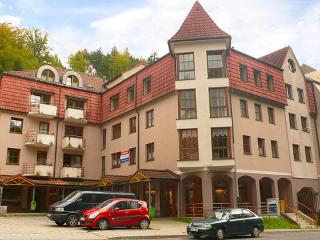 K Lanovce ~ RA12418 - Karlovy Vary vacation rentals