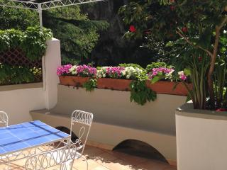 Positano Casa Lilli in the heart of Positano - Positano vacation rentals