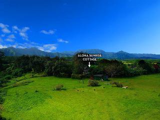 Aloha Sunrise Cottage - Kilauea vacation rentals