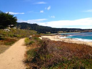 Lovely Contemporary Retreat- 0.5mi. walk to Beach - Carmel vacation rentals