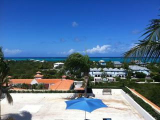 Amazing Ocean Views - Breezy Contemporary Studio - Turtle Cove vacation rentals