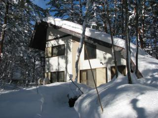 Cedar Ridge Cottage - If you want serious powder! - Kitaazumi-gun vacation rentals