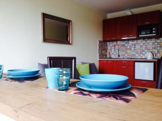 Bright Druskininkai Studio rental with Internet Access - Druskininkai vacation rentals