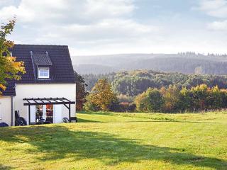 HE 756 ~ RA13129 - Bad Neuenahr-Ahrweiler vacation rentals