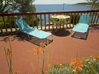 Apartment Svitla 1 - Hvar vacation rentals