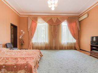 2-bedroom in the center. City Garden nearby - Ukraine vacation rentals