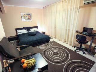 Grand Accommodation - Enescu Studio - Bucharest vacation rentals