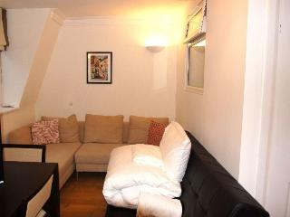 Luxury 3Bed Apt in Mayfair London - London vacation rentals