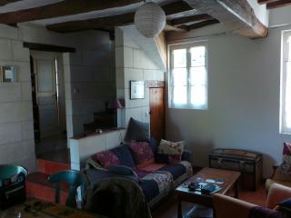 Maison de caractère au coeur du Val de Loire - Montrichard vacation rentals
