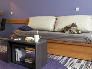 Superb 2 Rooms Apartment in Courbevoie- La Défense - Courbevoie vacation rentals