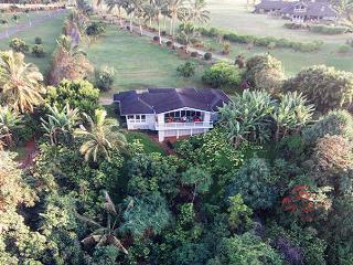 North shore home with Ocean Views! - Kilauea vacation rentals