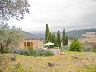 Agriturismo in Chianti - Castellina In Chianti vacation rentals