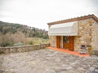 Traditional, independent house in the heart of Chianti - Castellina In Chianti vacation rentals