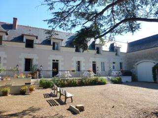 Cosy flat with 2 bedrooms and pool - Chisseaux vacation rentals