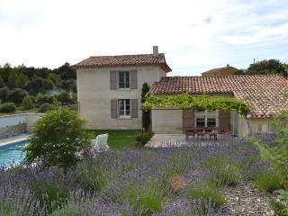 maison de campagne - Saint-Saturnin-les-Apt vacation rentals