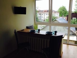 Cozy Druskininkai Studio rental with Internet Access - Druskininkai vacation rentals